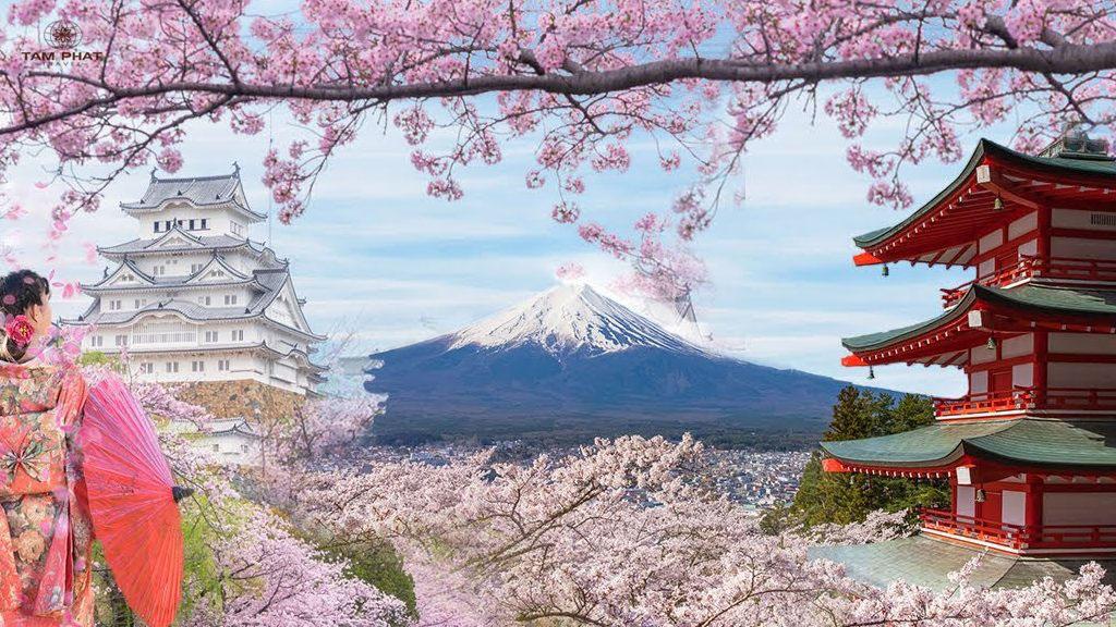 HÀ NỘI – NAGOYA- OSAKA – KYOTO– KAWAGUCHIKO- MT. FUJI - TOKYO(6N5Đ)